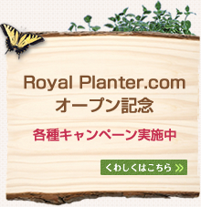 Royal Planter.com オープン記念