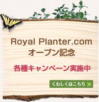 Royal Planter.com オープン記念